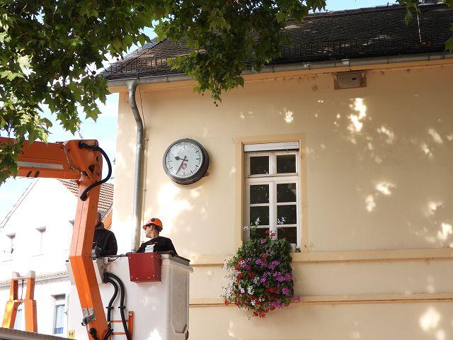 Die erste Nisthilfe hängt! Ortsverwaltung Mombach - Bild Heribert Blankenheim